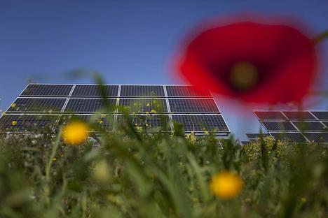 Falck Renewables apuesta por la Comunidad Valenciana para el desarrollo y sostenibilidad del territorio
