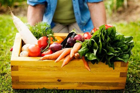 Insumos para la producción ecológica: el avance hacia una agricultura más rentable y sostenible