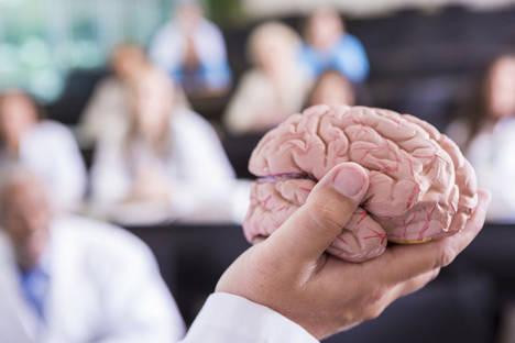 Ispeduc funda el primer Máster en Neuropsicopedagogía online a nivel mundial