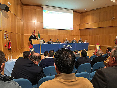 José Luis García-Palacios Álvarez elegido presidente de la FOE
