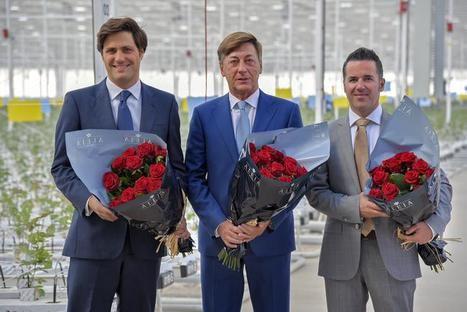 José María Martínez de Haro, presidente ejecutivo; Luis Corella, Consejero Delegado; Sergio Moreno, Director de Operaciones