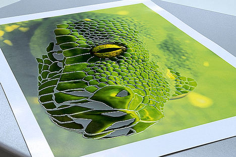 Konica Minolta celebra el poder de la tecnología MGI en impresión digital