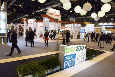 La compra de mascotas en tiendas de animales desciende un 10% en una década