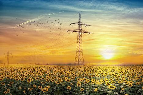 La electricidad: medidas del Gobierno