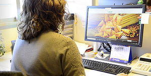 Leng-d'Or continúa consolidando su proceso de transformación digital con NetApp