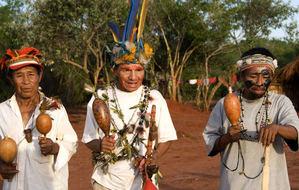Los guaraníes siguen luchando por sus derechos territoriales a pesar de los continuos ataques.