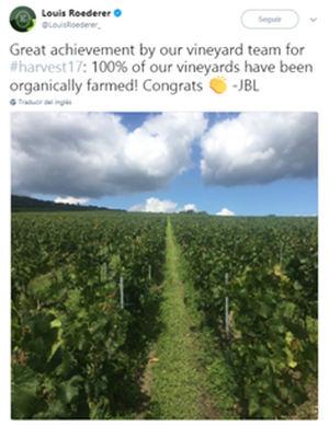 Louis Roederer, la primera Gran Maison de Champagne 100% ecológica