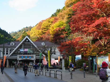 Rutas naturales para disfrutar en Tokio