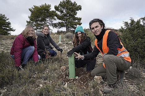 Mustela planta 1.167 árboles, cifra de los bebés nacidos durante el Día del Medio Ambiente