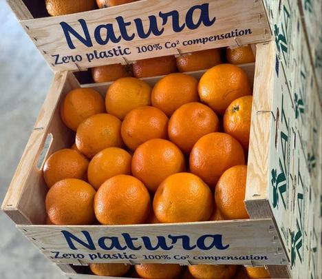 NAT FRUIT EUROPE: Vía verde para la exportación de frutas y verduras españolas