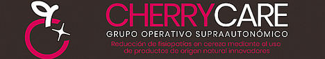 Nace el grupo operativo supraautonómico CHERRYCARE para reducir de forma natural las fisiopatías de un fruto con un valor estratégico en España: la cereza