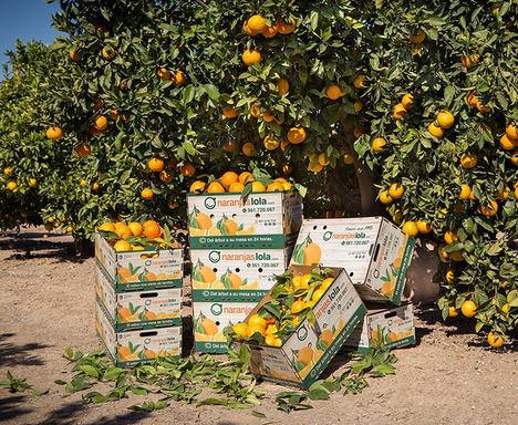 NaranjasLola.com comienza su nueva campaña de cítricos con importantes novedades