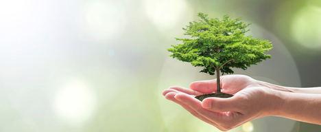 El emprendimiento verde con impacto positivo social gana peso en Natura Málaga de la mano de Foro NESI, del 14 al 16 de mayo en Fycma