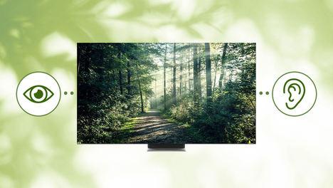 Nuestra prioridad, hacer televisores más accesibles