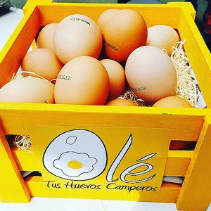 La franquicia Olé Tus Huevos Camperos continúa su proceso de expansión en franquicia