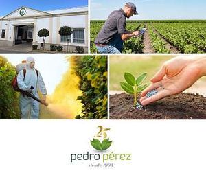 PEDRO PEREZ AGRÍCOLA cumple su 25 aniversario mientras reafirma su colaboración con CEDEC®