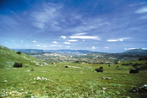 La Junta destina 1,2 M€ a asesorar a empresas ubicadas en espacios naturales de Andalucía