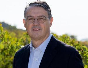 Pau Roca nuevo director general de la Organización Internacional de la Viña y el Vino.