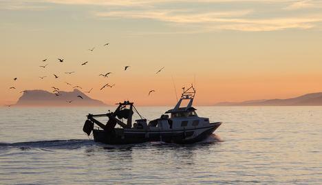 Adra, Barbate y Motril cuentan con nuevas Organizaciones de Productores Pesqueros