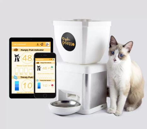 Petpresso, cuidador inteligente para gatos, listo para su lanzamiento en Kickstarter