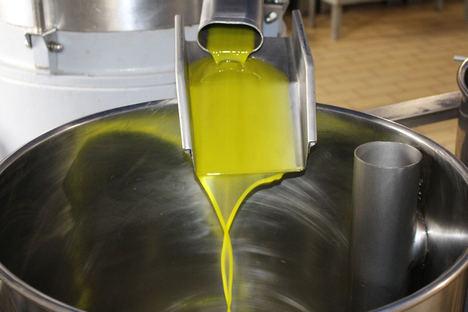 Acesur lidera Phenoils, un proyecto europeo para conseguir la extracción de aceite de oliva virgen extra saludable
