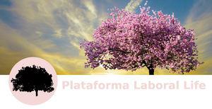 La Plataforma Laboral Life organiza un curso de verano para saber afrontar el estrés laboral en tiempos difíciles