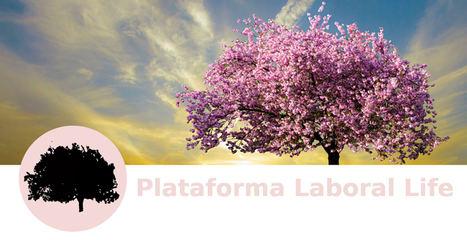 La Plataforma Laboral Life celebra su primer aniversario demostrando que otra forma de trabajar es posible