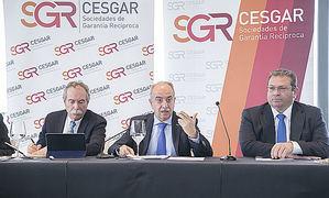 Presentación VIII Informe Cesgar.