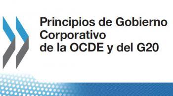 OCDE, Fundación Esther Koplowitz y Responsabilidad Social Corporativa