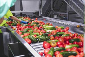 La producción de Alvalle se sitúa por encima de los 29 millones de litros