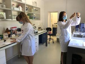 La Comunidad de Madrid desarrolla 89 proyectos de I+D+i para aumentar la rentabilidad del campo regional