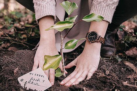ONE OAK plantea unas rebajas más sostenibles mediante la reforestación de 10.000 árboles en Galicia