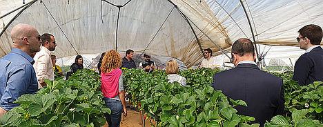 Responsables de Sostenibilidad de empresas agroalimentarias comprueban el proyecto experimental con representantes de Ferdoñana.
