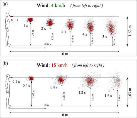Aerosoles, cómo se contagia la COVID-19 en el aire