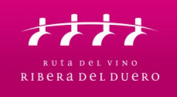 Enoturismo sobre dos ruedas entre viñas