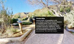 Rutas virtuales, Almería, Jardín Botánico.