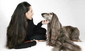 Una de cada 7 parejas españolas reconoce tener menos sexo por culpa de sus mascotas