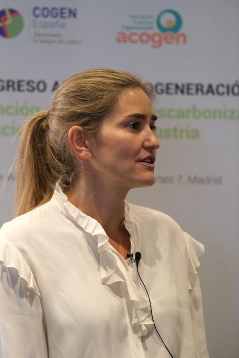 Las subastas de cogeneración impulsarán la descarbonización de la industria calorintensiva