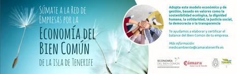 """Seeds for Sustainability, la Escuela de Sostenibilidad y Vida Sana, plataforma elegida para desarrollar el Programa """"Tenerife, Isla del Bien Común"""""""