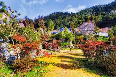 Aventuras en la naturaleza y senderismo en Kioto para empezar 2021