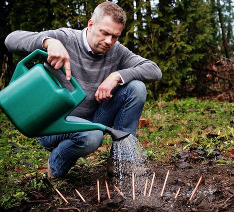 Según Sprout World, el Covid-19 hará el branding de las empresas más ecológico