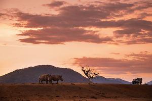 Sudáfrica - Parque Nacional Kruger
