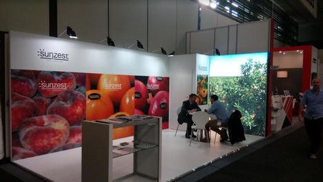 Sunzest Fruits, presente en la Feria Fruit Logística por segundo año consecutivo