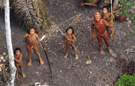 """Survival International exige la protección de los territorios indígenas como """"cuestión de vida o muerte"""