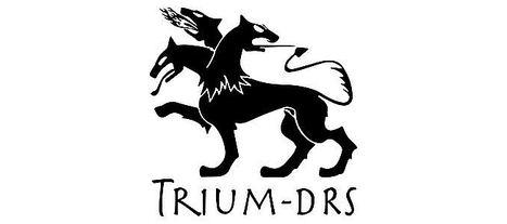 TRIUM-DRS ultima la construcción de Cerberus, su estación de armas no tripulada de 30mm