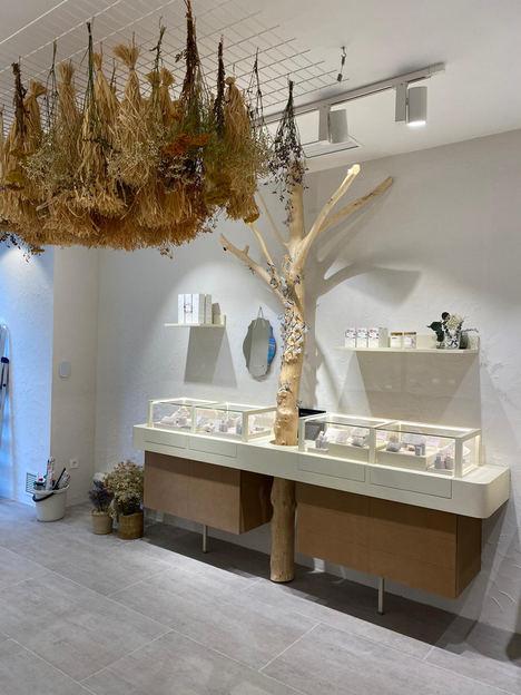 Apodemia, imparable, abre un nuevo espacio en Oviedo y ya suma 16 tiendas físicas