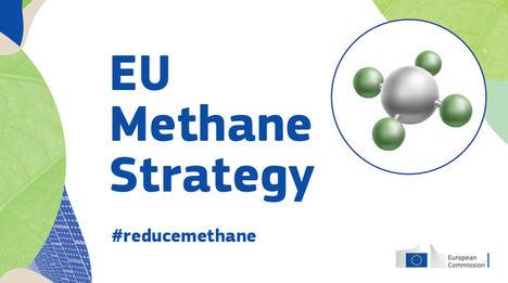 Unión de Uniones lamenta que la estrategia europea de metano criminalice a la ganadería y fije objetivos poco realistas