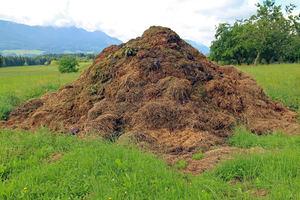 Unión de Uniones insiste en la revisión integral del RD de nutrición sostenible de suelos agrarios ante los impactos negativos que generaría