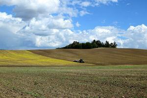 Unión de Uniones considera que los datos de Renta Agraria del MAPA ofrecen un diagnóstico alejado de la realidad de agricultores y ganaderos