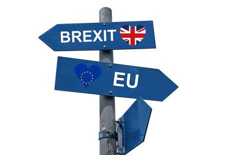 Unión de Uniones destaca la caída de la exportación a Reino Unido del 5% que se agravará con la obligatoriedad de los certificados fitosanitarios de exportación